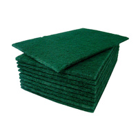 Regular Duty Scourer Pads (100pcs)